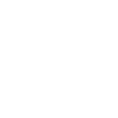 VLY Logo